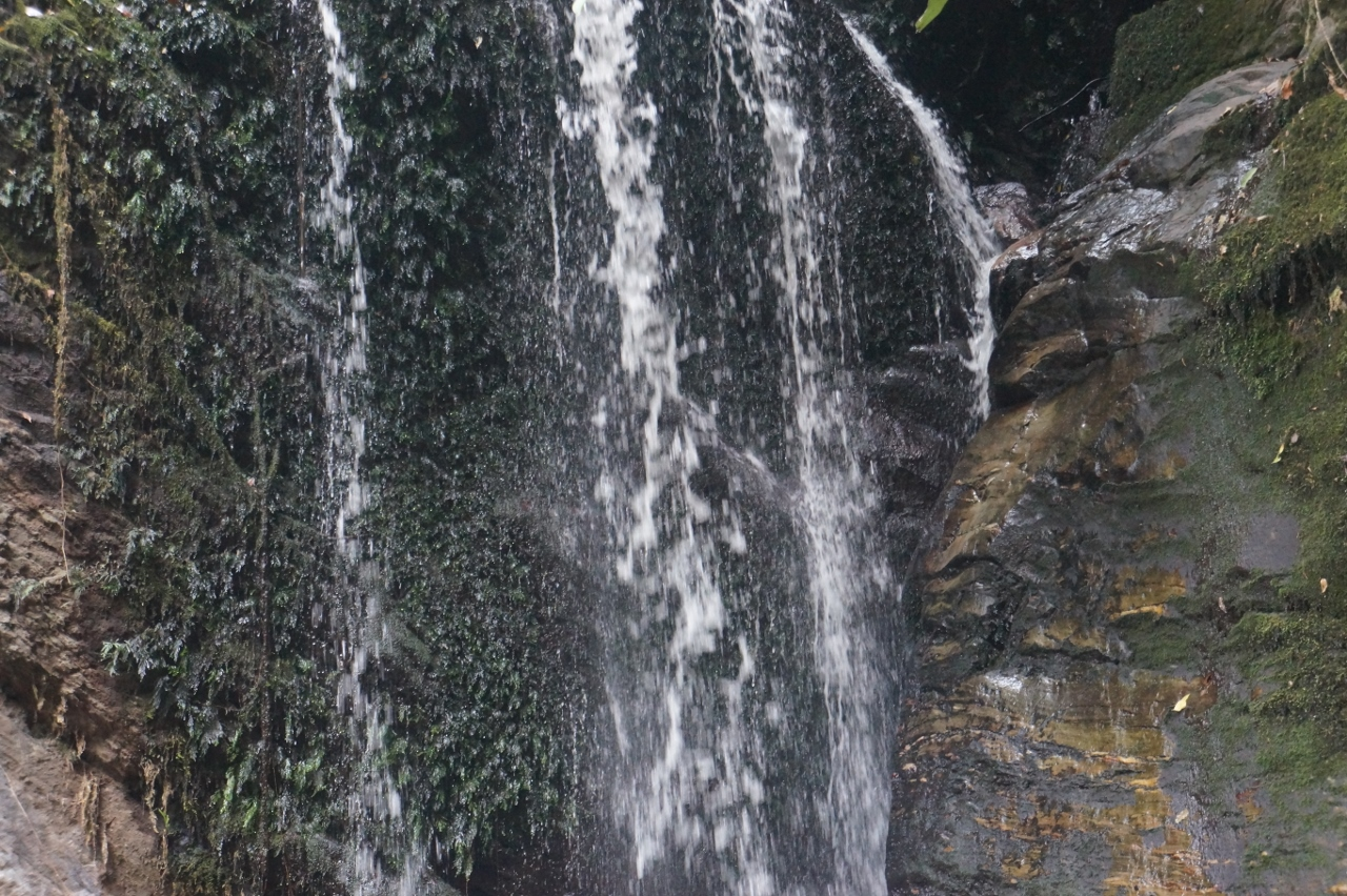 Erin-Ijesha-Waterfalls (12)